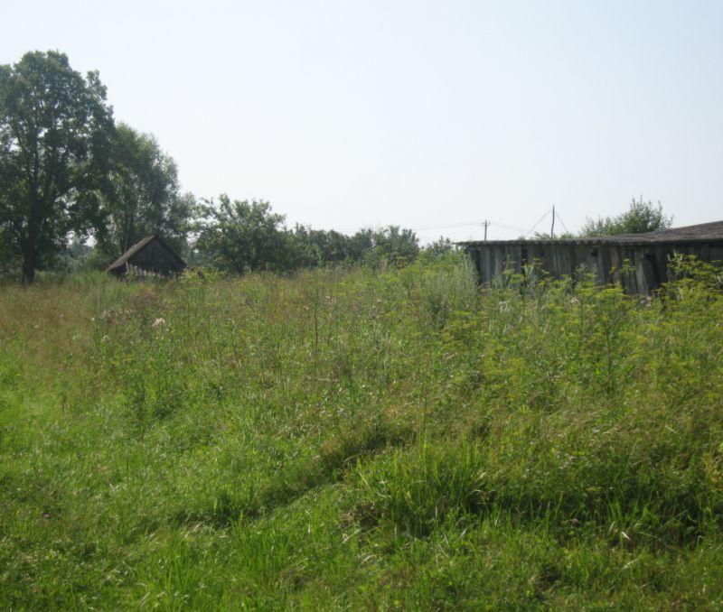 Продажа недорогих домов в дубае дача в юрмале купить недорого