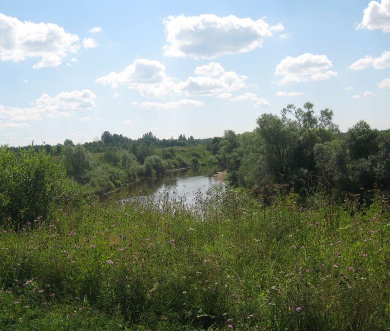 как взять землю в аренду в новгородской области более