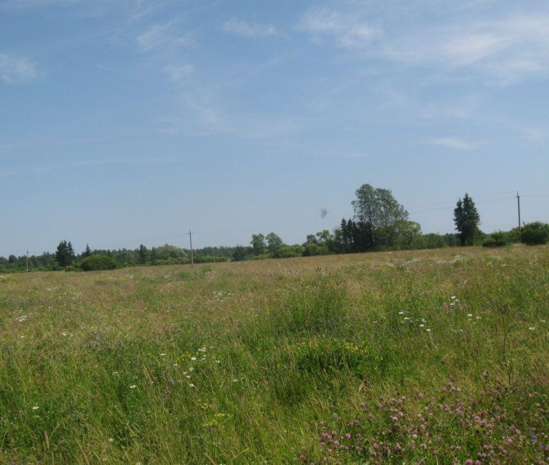 аренда земли под огородничество показалось