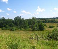 Новгородская область, Старорусский район, д. Толочно Участок №4