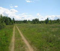 Новгородская область, Старорусский район Участок №101
