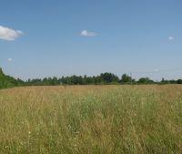 Новгородская область, Старорусский район Участок №150