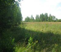 Новгородская область, Старорусский район Участок №157