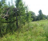 Новгородская область, Старорусский район, д. Борок Участок №158