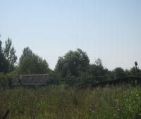 Новгородская область, Старорусский район Участок №159