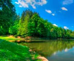 Участки на реке